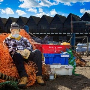 Alf Nets Landscape