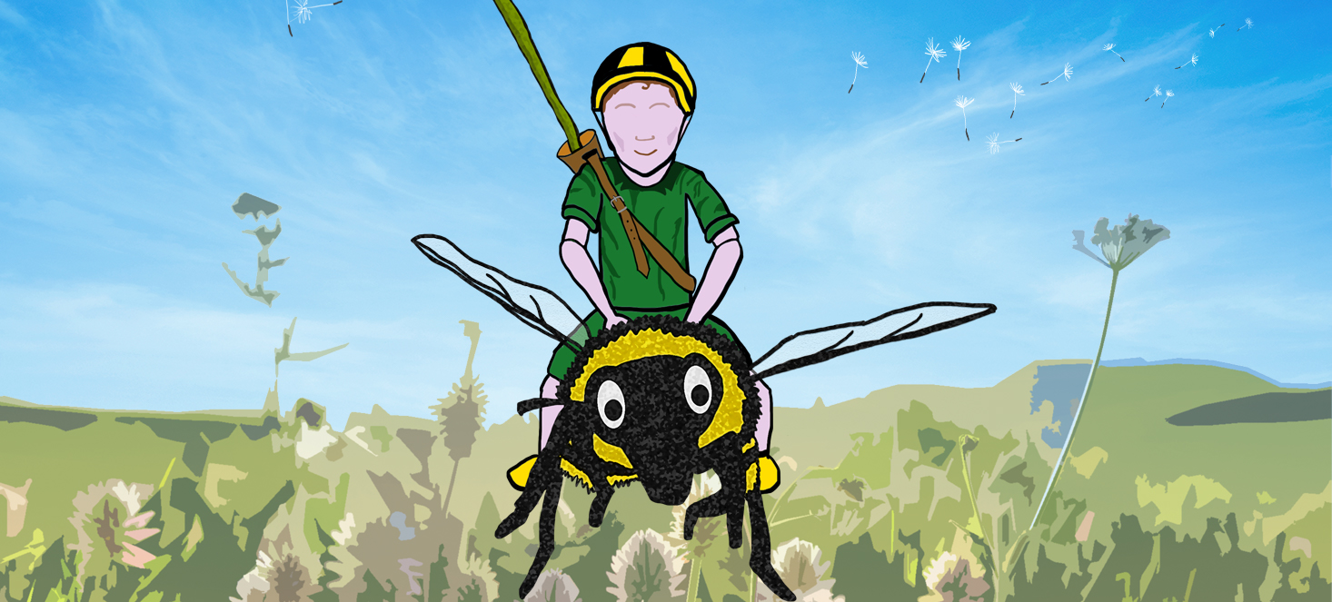 Graphic illustration of a boy all in green, with a yellow and black helmet, sitting on top of a giant bee with cartoony eyes. In the background are distored grass and flowers, a bright sky and dandelion seeds floating away.